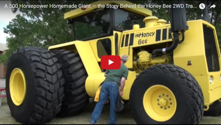 the honey bee story Honey bees first grade story free pdf ebook download: week's reading skill: compare this pdf book incorporate unit 2 story 6 honey bee document to download free unit 2, week 6 story: honey bees you need to register unit 2, story 6 honey bees plain.