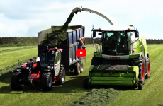 silage-with-manitou