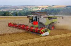 two claas 8900 lexions